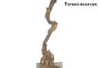 torses-ecorces6
